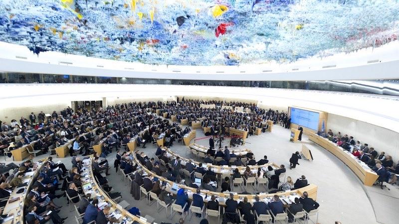 Consejo Derechos humanos ONU